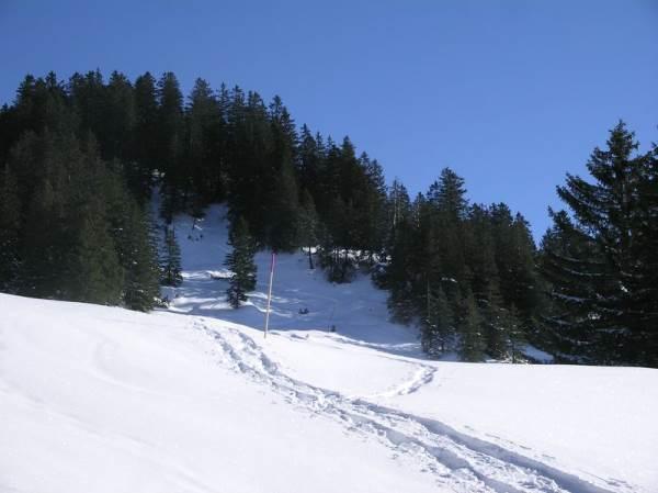 Schneeschuhtrail Holzegg