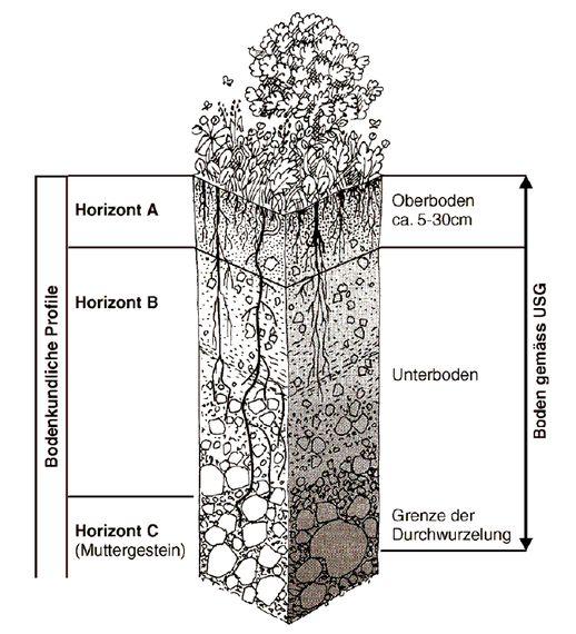 Grafik Bodenaufbau